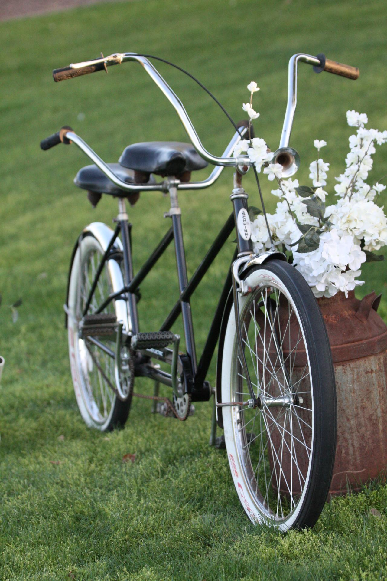 rent vintage tandem bicycle Edmonton wedding decor
