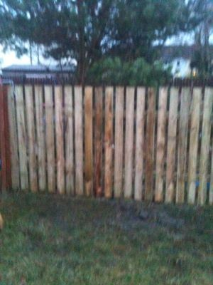 6 foot boundary fence using treated wood