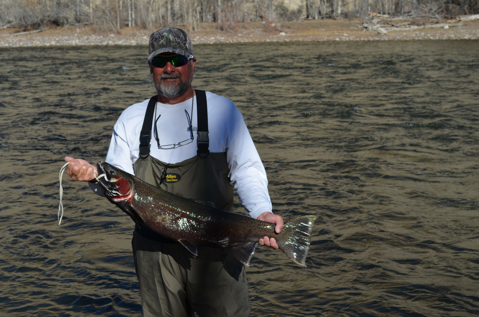 Rick with one of the biggest steelhead caught last spring (2014)
