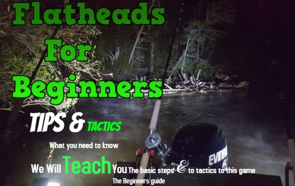 Flatheads for beginners