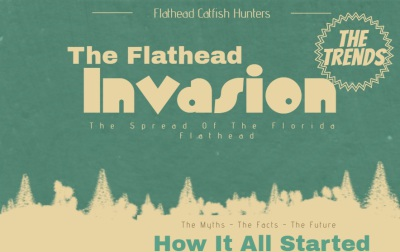 The Flathead Invasion