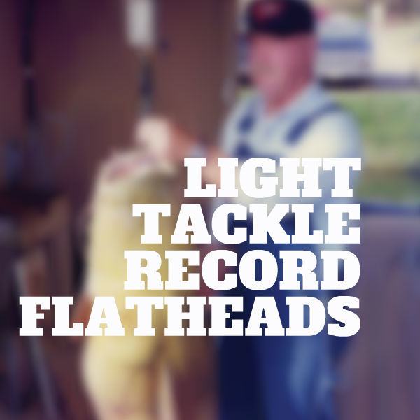 LIGHT TACKLE RECORD FLATHEADS