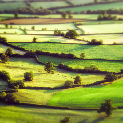 A cool snapshot of Somerset!
