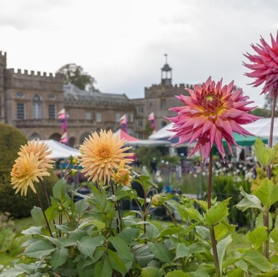 A fantastic festival - gardens, the harvest and gin!