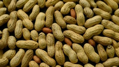 Study: Skin Patch Could Help Kids With Peanut Allergies