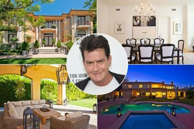Charlie Sheen Selling Bachelor Pad