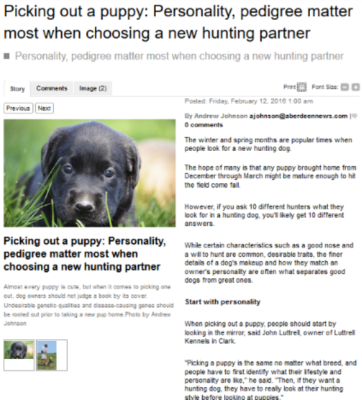 Aberdeen News: Picking Out a Puppy