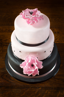 Pretty in Pink Cake by NJL Creations