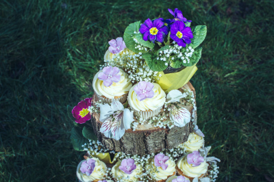 woodland cupcakes by njl creations