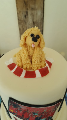 image cakes from £35