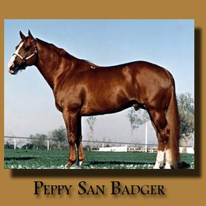 Peppy San Badger ~ Paternal Grandsire