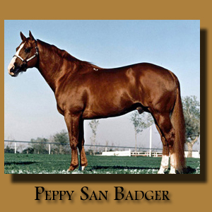 Peppy San Badger ~ Paternal Grandsire