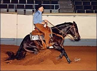 Roosters Wrangler ~ Sire