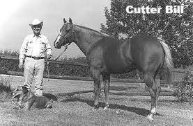 Cutter Bill