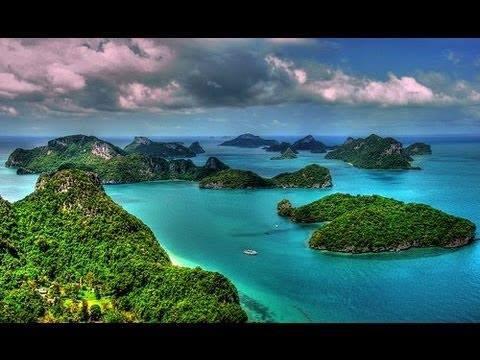 Tropical Beauty!