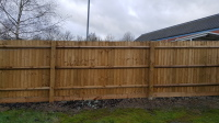 closeboard feather edge fencing