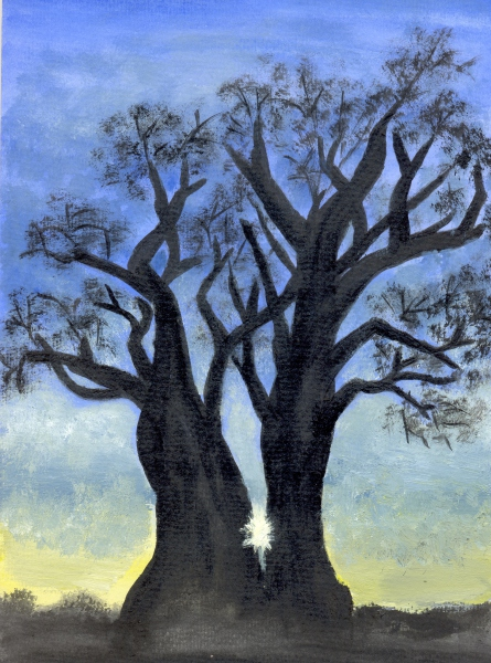 Through the Baobab