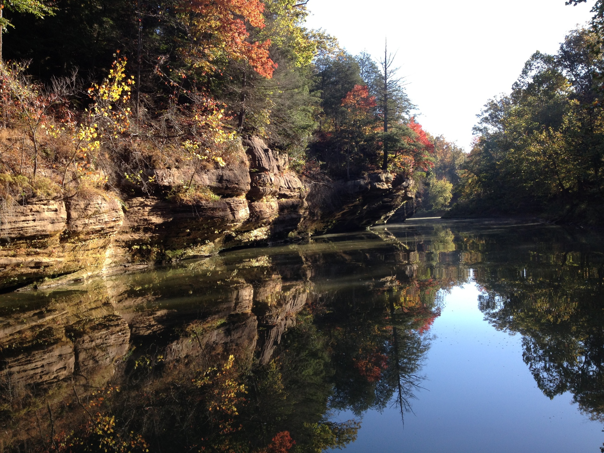 Friends of Rough River Lake, Inc. - kayaking, Little Clifty Creek
