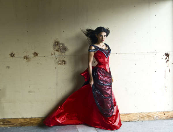 1890's Red Vamp Gown