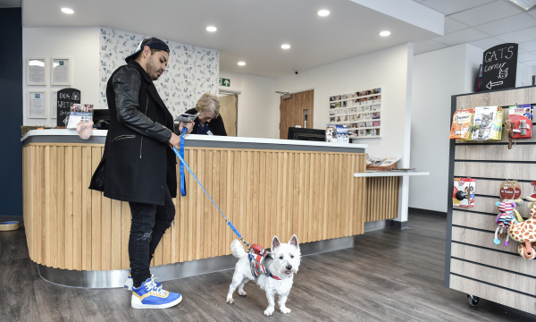 Lynton Veterinary Group – Woking