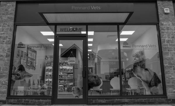 Pennard Vets, Langley Park - Maidstone