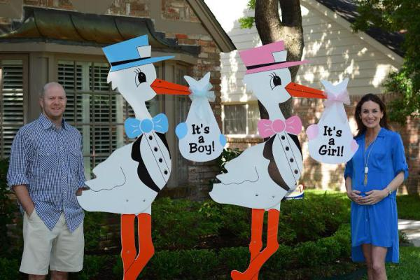 stork sign rentals, stork birth announcement, rent a stork, twins, gender reveal sign