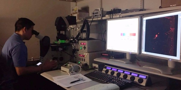 Giussepe Yanez at the Confocal Microscope