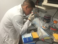 Giussepe Yanez Loading Samples for the PCR