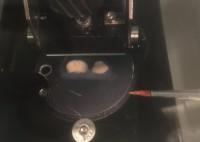 Niharika Desiraju Cutting Brain Samples with the Vibratome
