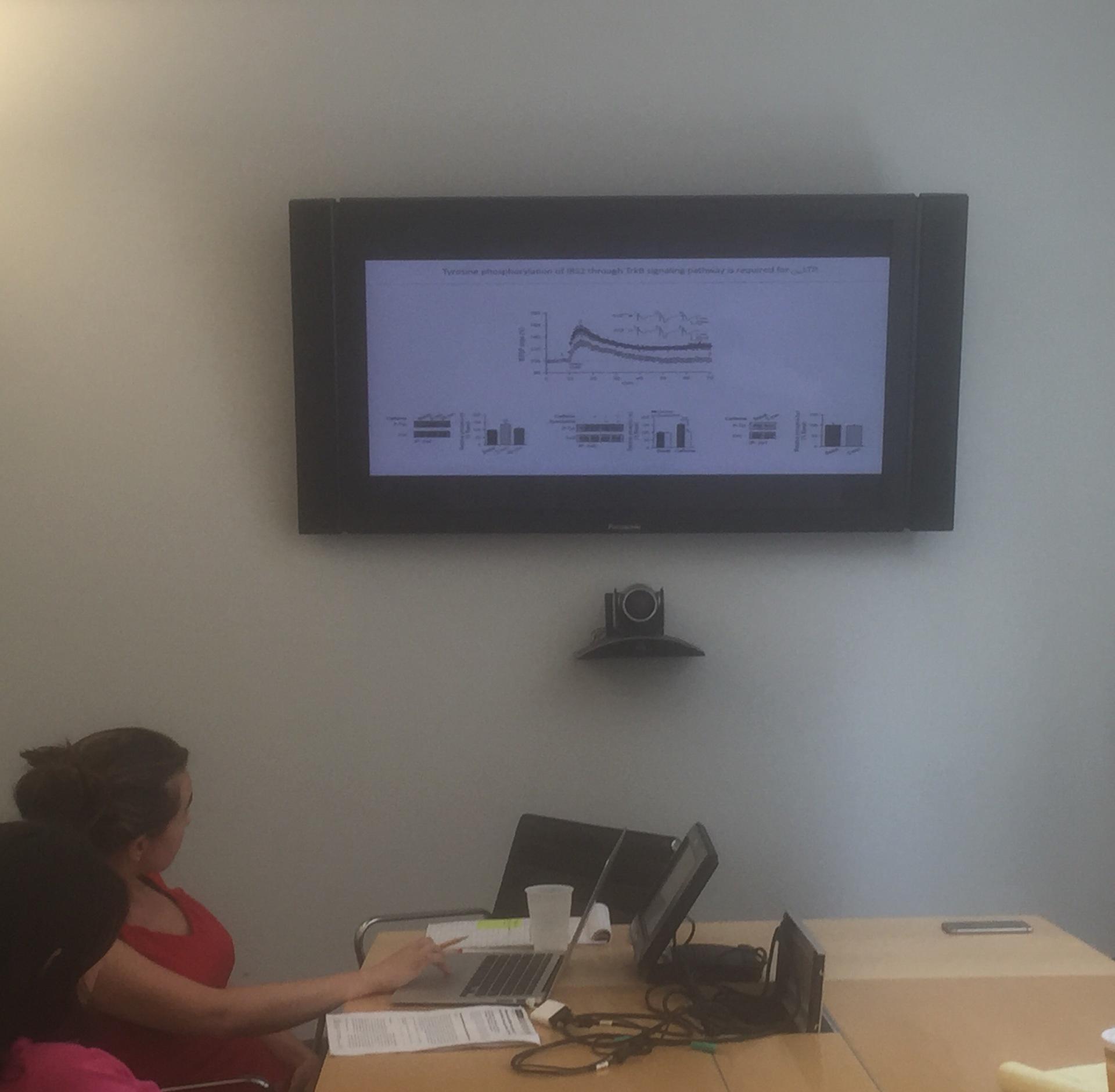 Lab Meeting Presentation by Dr. Cristina María Lao Peregrin