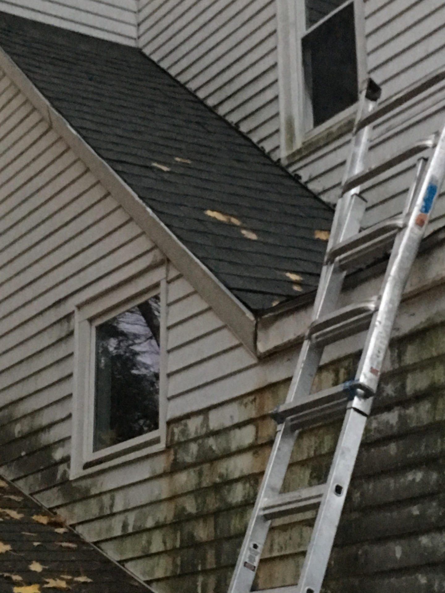 Brunswick Roof Repair and Restoration