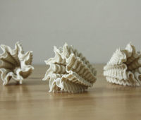 Ceramic coral created with WASP 3D printer
