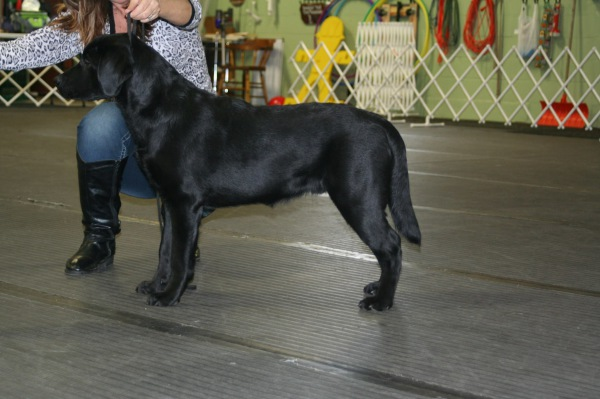 Murphy 6 months