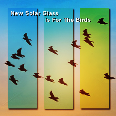 a vision of the future for solar glass which prevents bird collisions and adds beauty