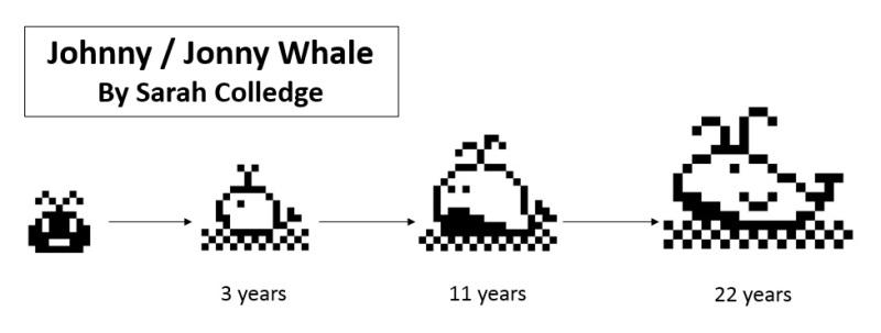 Johnny Whale, Jonny Whale, Whale Tamagotchi