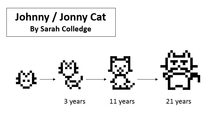 Tamagotchi, Johnny pet, Jonny pet, Johnny Cat, Jonny cat, cat Tamagotchi, cat electronic pet