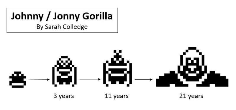 Johnny Pet, Jonny Pet, Johnny Gorilla, Jonny Gorilla, Johnny Monkey, Jonny Monkey