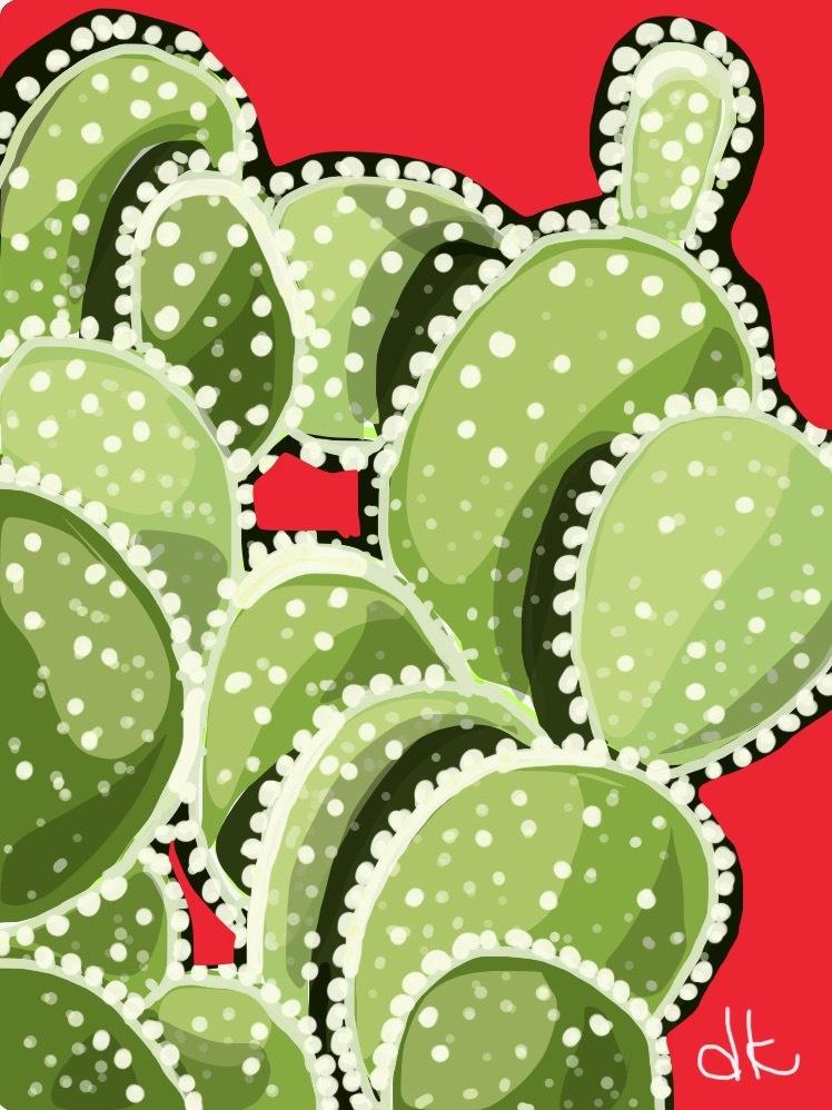 Scottsdale cacti