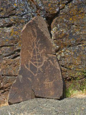 Washington State Petroglyphs Tour Guiding Services