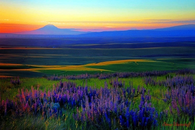 Central Oregon Sunsets Tour Guiding Services