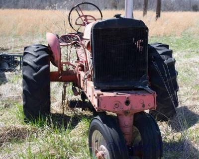 MO_14_farm life 047