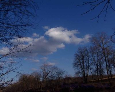 MO_13_landscape 024