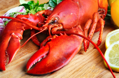 superfood Lobster