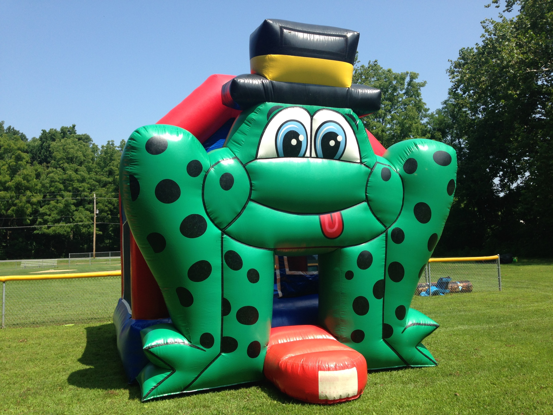 Inflatable Frog Bounce House