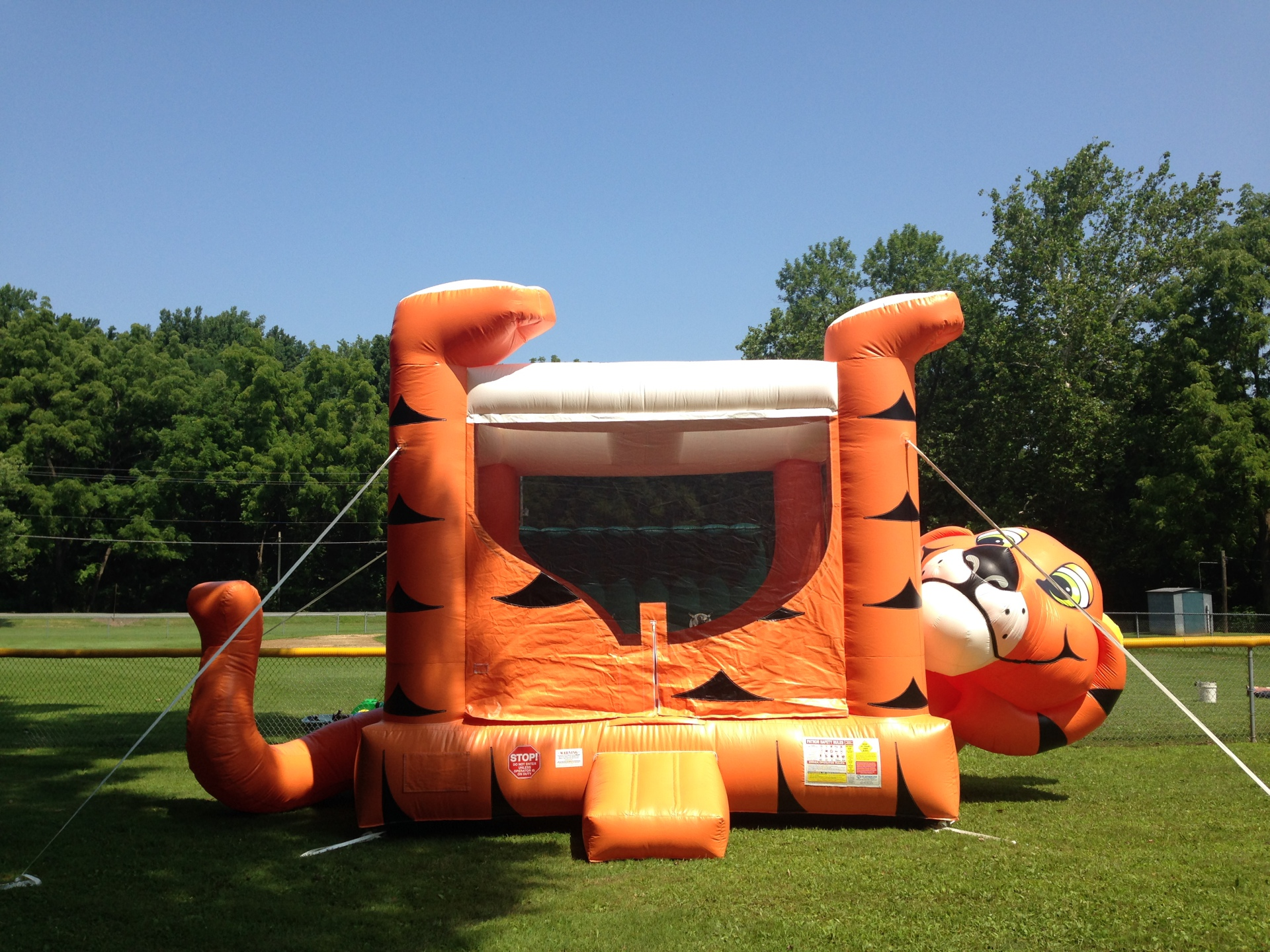 Inflatable Tiger Belly Up Bounce House