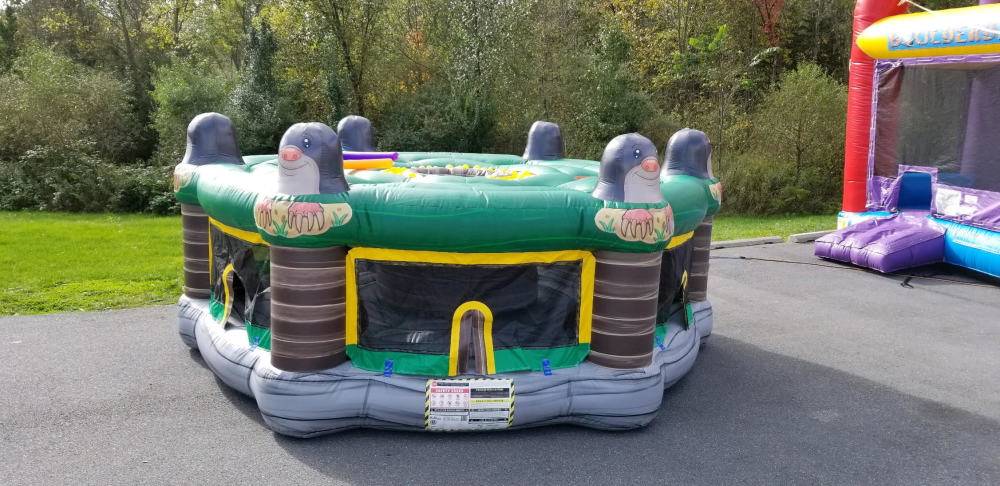 Lancaster Pa Inflatables Bounce House Party Rentals Big Bright Bounces