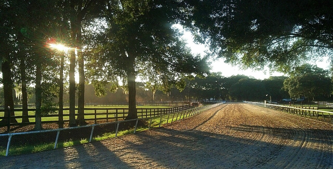 boarding farms in ocala, fl