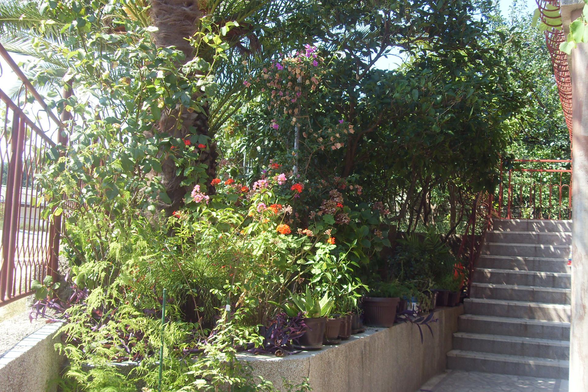 bašta i stepenište