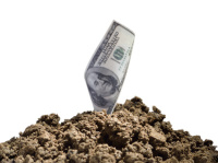 dollar qui pousse