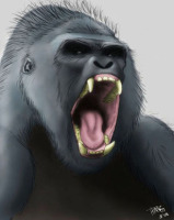 Gorilla Scream